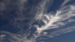 Feathery Cirrus Clouds on Parade Feathery ice crystal cirrus uncinus clouds drift overhead in jet stream winds.